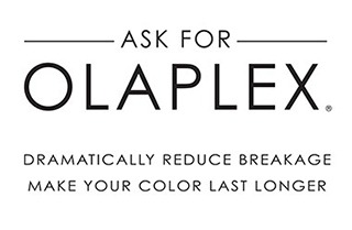Olaplex treatment Plymouth